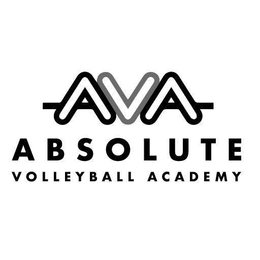 AVA Logo_white bkgd